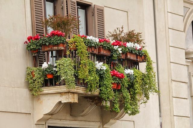 Balkon, květiny, truhlíky